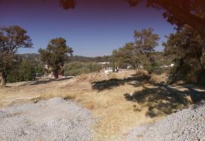 Foto de terreno habitacional en venta en  , santa maría atlihuetzian, yauhquemehcan, tlaxcala, 18625147 No. 01