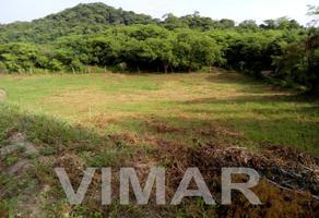 Foto de terreno habitacional en venta en  , santa maria colotepec, santa maría colotepec, oaxaca, 0 No. 01