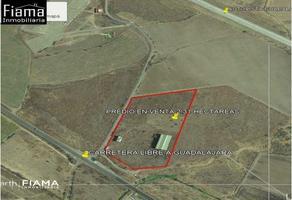Foto de terreno habitacional en venta en  , santa maría del oro, santa maría del oro, nayarit, 13988252 No. 01
