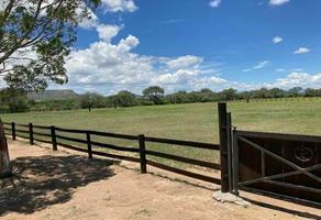Foto de rancho en venta en santa maría del rio , linda vista, santa maría del río, san luis potosí, 20974742 No. 01