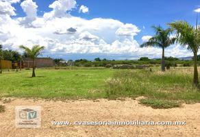 Foto de terreno habitacional en venta en  , santa maria del tule, santa maría del tule, oaxaca, 10066577 No. 01