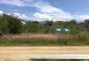 Foto de terreno habitacional en venta en  , santa maria del tule, santa maría del tule, oaxaca, 0 No. 01