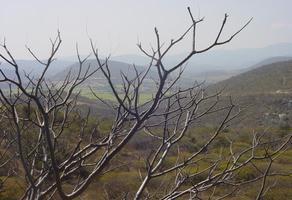 Foto de terreno industrial en venta en  , santa maría, jojutla, morelos, 16567112 No. 01