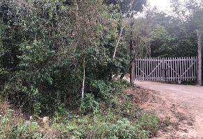 Foto de terreno comercial en venta en santa maria lado izquierdo , puerto morelos, benito juárez, quintana roo, 6810778 No. 01