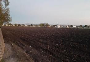 Foto de terreno comercial en venta en santa maría magdalena , santa maría magdalena, querétaro, querétaro, 12426795 No. 01