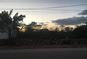 Foto de terreno habitacional en renta en  , santa maria, mérida, yucatán, 10866233 No. 01
