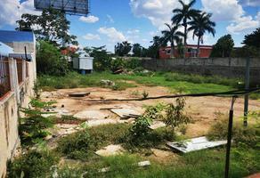 Foto de terreno habitacional en renta en  , santa maria, mérida, yucatán, 0 No. 01
