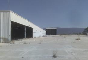 Foto de nave industrial en venta en  , santa maria, poncitlán, jalisco, 6797535 No. 01