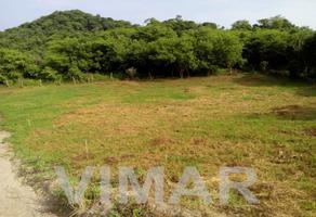 Foto de terreno habitacional en venta en  , santa maria, santa maría colotepec, oaxaca, 0 No. 01