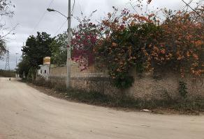 Foto de terreno habitacional en venta en  , santa rita cholul, mérida, yucatán, 10480409 No. 01