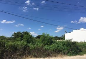 Foto de terreno habitacional en venta en  , santa rita cholul, mérida, yucatán, 7188369 No. 01