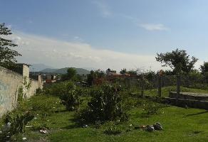 Foto de terreno habitacional en venta en  , santa rosa 30 centro, tlaltizapán de zapata, morelos, 14202615 No. 01