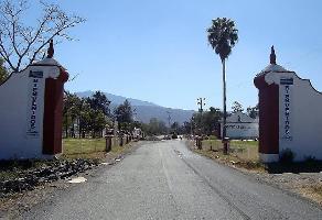 Foto de terreno habitacional en venta en  , santa rosa, ixtlahuacán de los membrillos, jalisco, 5803864 No. 01