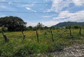 Foto de terreno comercial en venta en  , santa rosa, yautepec, morelos, 0 No. 01