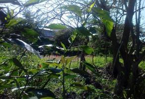 Foto de terreno industrial en venta en  , santa rosa, yautepec, morelos, 0 No. 01