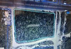 Foto de terreno habitacional en venta en santa rosalia, , san josé del cabo (los cabos), los cabos, baja california sur, 0 No. 01