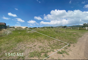 Foto de terreno habitacional en venta en  , santa teresa, guanajuato, guanajuato, 21769626 No. 01