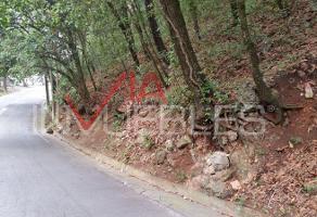 Foto de terreno habitacional en venta en 00 00, bosques de san ángel sector palmillas, san pedro garza garcía, nuevo león, 7098748 No. 01