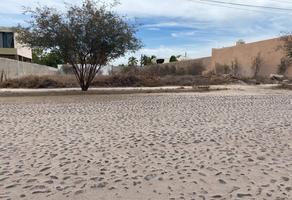 Foto de terreno habitacional en venta en santiago , bella vista, la paz, baja california sur, 0 No. 01