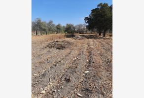 Foto de terreno habitacional en venta en santiago tetla de la solidaridad 7, santiago tetla, huaquechula, puebla, 0 No. 01