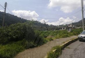 Foto de terreno habitacional en venta en  , santiago tlaxomulco centro, toluca, méxico, 0 No. 01