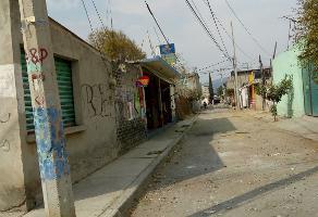 Foto de terreno habitacional en venta en  , santiago, valle de chalco solidaridad, méxico, 0 No. 01