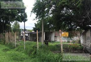 Foto de terreno habitacional en renta en  , santiago, yautepec, morelos, 0 No. 01
