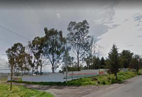 Foto de terreno habitacional en venta en  , santiaguito tlalcilalcali, almoloya de juárez, méxico, 10903140 No. 01