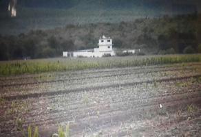 Foto de rancho en venta en  , santo domingo, santo domingo, san luis potosí, 14008448 No. 01