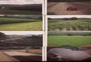 Foto de rancho en venta en  , santo domingo, santo domingo, san luis potosí, 15887557 No. 01
