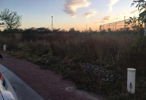 Foto de terreno habitacional en renta en sauce , lagos de moreno, lagos de moreno, jalisco, 6799979 No. 01