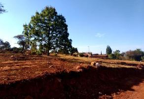 Foto de terreno habitacional en venta en s/c , atemajac de brizuela, atemajac de brizuela, jalisco, 0 No. 01