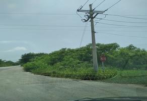 Foto de terreno habitacional en venta en s/c , aviación, tizimín, yucatán, 0 No. 01