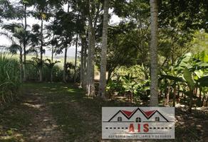 Foto de terreno habitacional en venta en s/c , cosaltepec, córdoba, veracruz de ignacio de la llave, 0 No. 01