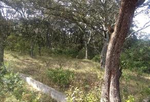 Foto de terreno habitacional en venta en sc , el varal, amealco de bonfil, querétaro, 0 No. 01