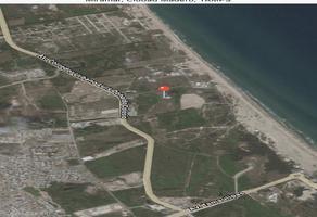 Foto de terreno habitacional en venta en s/c , miramar, ciudad madero, tamaulipas, 8987533 No. 01
