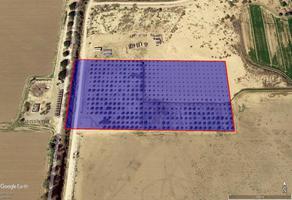 Foto de terreno habitacional en venta en s/c , nuevo milenio, mexicali, baja california, 0 No. 01