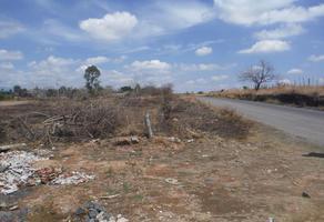 Foto de terreno habitacional en venta en sc , paraíso las flores, yecapixtla, morelos, 8334797 No. 01