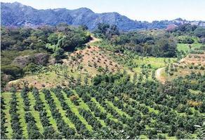 Foto de terreno comercial en venta en s/c , san vicente, tacámbaro, michoacán de ocampo, 19455293 No. 01