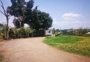 Foto de terreno habitacional en venta en sc sc, cuautlixco, cuautla, morelos, 0 No. 01