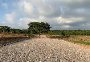 Foto de terreno habitacional en venta en s/c s/n , chivato, villa de álvarez, colima, 12422984 No. 01