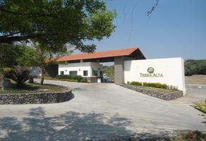 Foto de terreno habitacional en venta en s/c s/n , chivato, villa de álvarez, colima, 13056530 No. 01