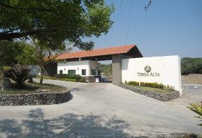 Foto de terreno habitacional en venta en s/c s/n , chivato, villa de álvarez, colima, 13056532 No. 01