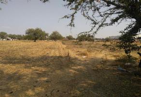 Foto de terreno comercial en venta en sc , tetelcingo, cuautla, morelos, 5793165 No. 01