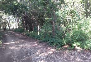 Foto de terreno industrial en venta en s/c , tizimin centro, tizimín, yucatán, 9163651 No. 01