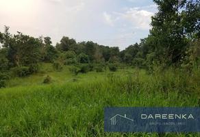 Foto de terreno habitacional en venta en  , sebastopol, san juan bautista tuxtepec, oaxaca, 0 No. 01