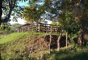 Foto de terreno habitacional en venta en sector la pera 1, ciudad induistrial 2da etapa, centro, tabasco, 0 No. 01