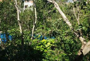 Foto de departamento en venta en  , selvamar, solidaridad, quintana roo, 17545403 No. 01