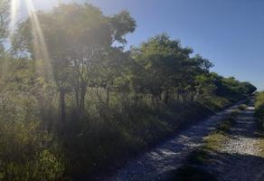 Foto de rancho en venta en sendero divisorio ., el fraile, montemorelos, nuevo león, 17661979 No. 01