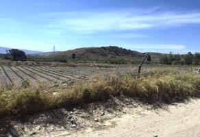 Foto de terreno habitacional en venta en senderos de santa anita , bosques de santa anita, tlajomulco de zúñiga, jalisco, 10455289 No. 01